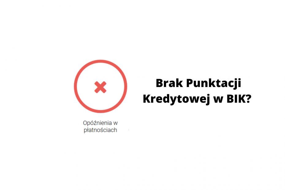 Brak Punktacji Kredytowej w BIK? Z czego może wynikać i co zrobić? | JanuszGrabowski.pl